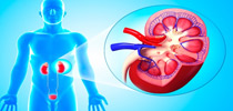 KIDNEY AND URINARY DISEASE